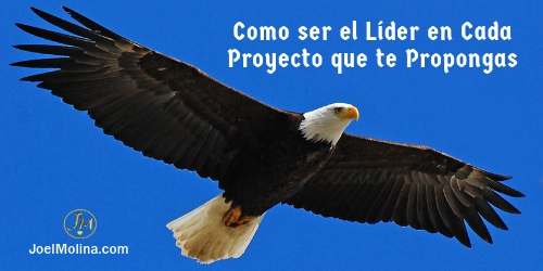 Joel Molina Liderazgo - Como ser el Líder en Cada Proyecto que te Propongas