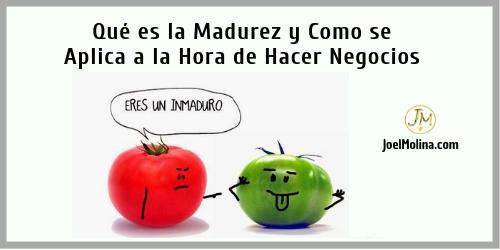 Que es la Madurez y Como se Aplica a la Hora de Hacer Negocios - Joel Molina