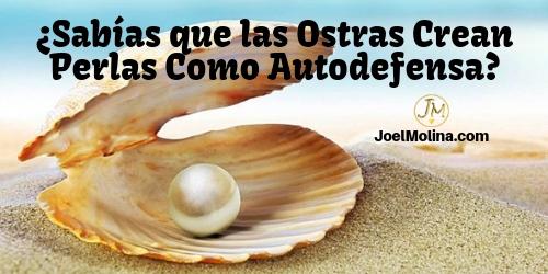 ¿Sabías que las Ostras Crean Perlas Como Autodefensa? Aplicalo a tu Negocio Online - Joel Molina