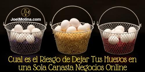 Cual es el Riesgo de Dejar Tus Huevos en una Sola Canasta Negocios Online