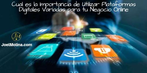 Cual es la Importancia de Utilizar Plataformas Digitales Variadas para tu Negocio Online