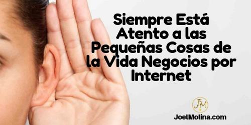 Siempre Está Atento a las Pequeñas Cosas de la Vida Negocios por Internet - Joel Molina