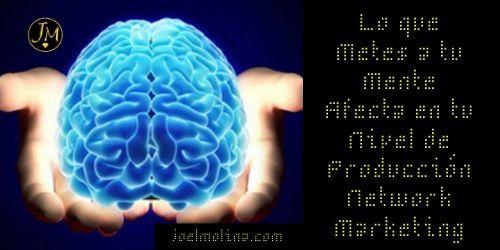 Lo que Metes a tu Mente Afecta en tu Nivel de Producción Network Marketing - Joel Molina