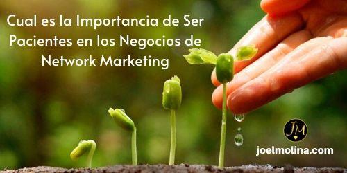 Cual es la Importancia de Ser Pacientes en los Negocios de Network Marketing