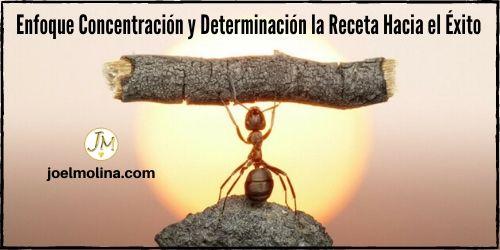 Enfoque Concentración y Determinación la Receta Hacia el Éxito en Network Marketing