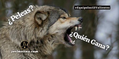 Características de los Lobos para Líderes y Emprendedores en MLM - Joel Molina