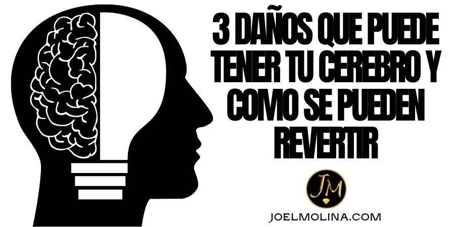 3 Daños que Puede Tener tu Cerebro y Como se Pueden Revertir